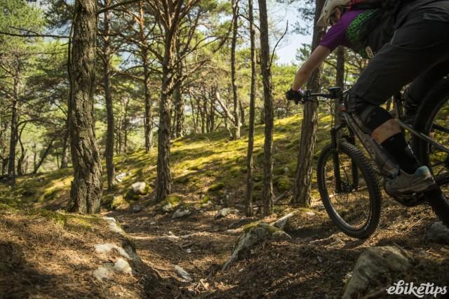 Liv Vall E+ Riding 2.JPG