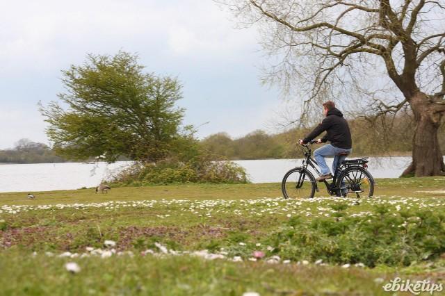 Roodog Mayfair - riding 3.jpg