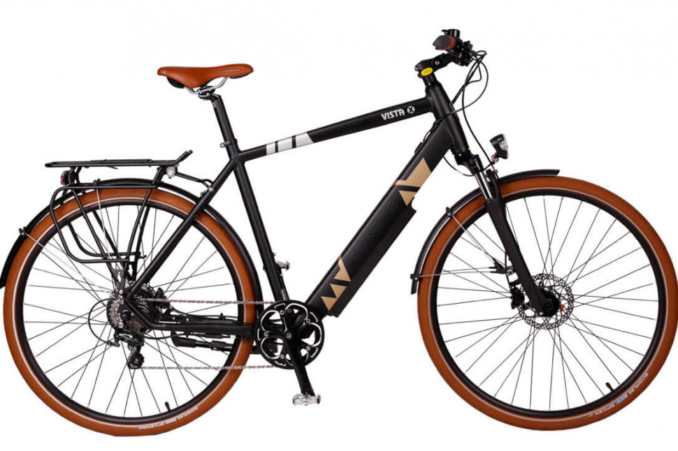 One of the stolen bikes, a Batribike Vista-X with battery missing